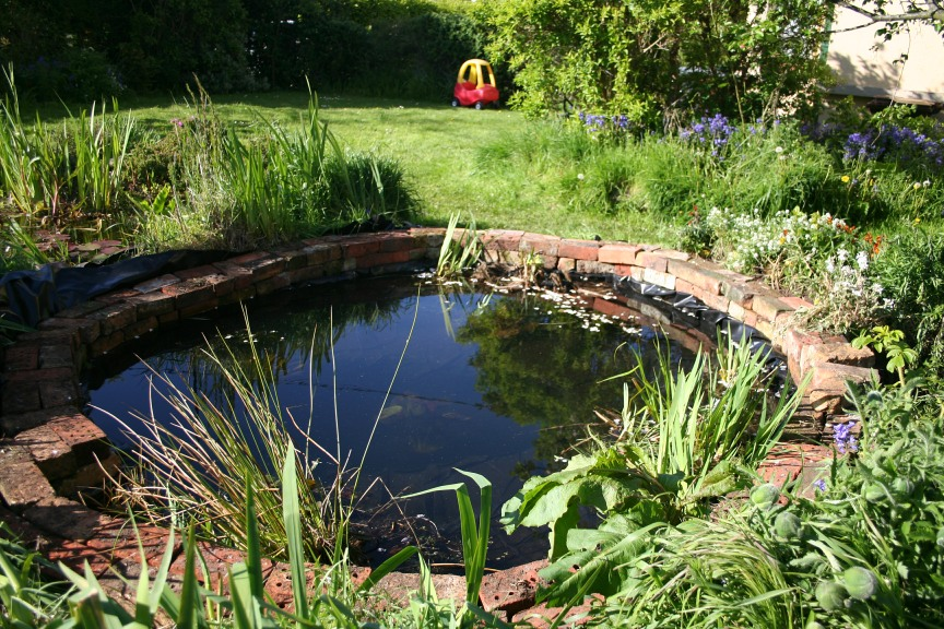 How to build a garden pond persona paper for Garden pond moulds