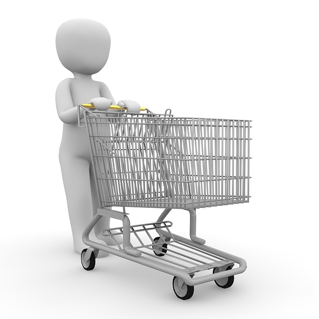 Shopping Carts And Motorized Ones That Stop Working Past A Big Yellow Line Persona Paper