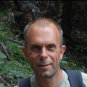 Lemark's avatar